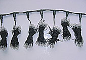 Llum de cortina LED KARNAR INTERNATIONAL GROUP LTD