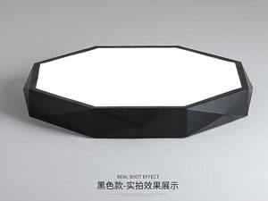 Led dmx light,LED project,24W Three-dimensional shape led ceiling light 2, blank, KARNAR INTERNATIONAL GROUP LTD